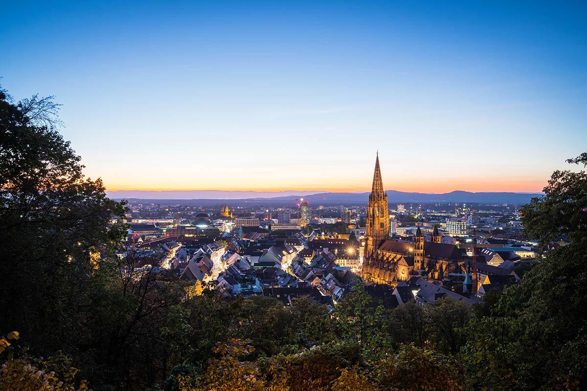 Blick auf die Stadt Freiburg